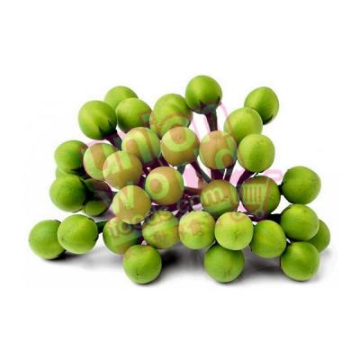 Pea Eggplants